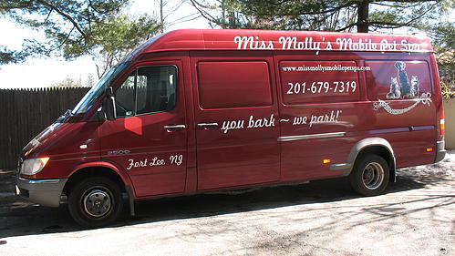 Soon Thereafter I Purchased And Converted A Sprinter Van Which Became Miss Mollys Mobile Pet Spa Boutique Inc Groomed Hundreds Of Dogs Cats